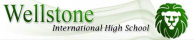 Wellstone International